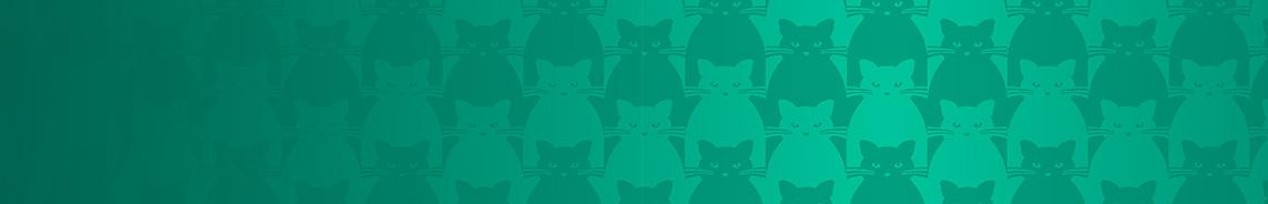 kitty-kitty-184x1141.jpg